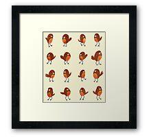 Robins Framed Print