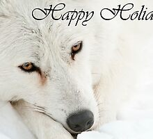 Arctic Wolf Holiday Card 4 by WolvesOnly