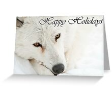 Arctic Wolf Holiday Card 4 Greeting Card