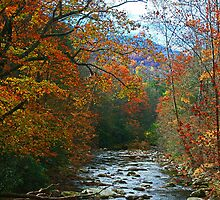 AUTUMN ON LITTLE RIVER by Chuck Wickham