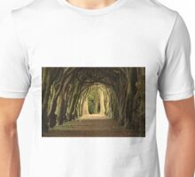 Cloister at Gormanston College Unisex T-Shirt
