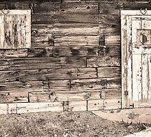 Sepia Rustic Old Colorado Barn Door and Window by Bo Insogna