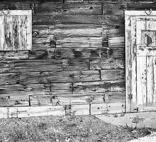 Rustic Old Colorado Barn Door and Window BW by Bo Insogna