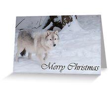 Timber Wolf Christmas Card English 1 Greeting Card