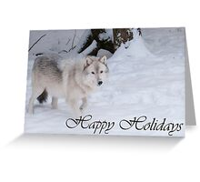 Timber Wolf Holiday Card 1 Greeting Card
