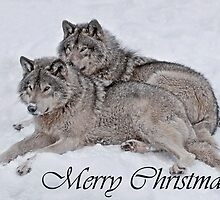Timber Wolf Christmas Card English 2 by WolvesOnly