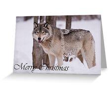 Timber Wolf Christmas Card English 3 Greeting Card