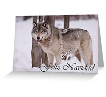 Timber Wolf Christmas Card Spanish 3 Greeting Card