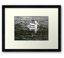 Trolling Along Artistic Photograph by Shannon Sears Framed Print