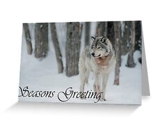Timber Wolf Season Card 4 Greeting Card