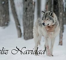Timber Wolf Christmas Card Spanish 4 by WolvesOnly