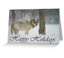 Timber Wolf Holiday Card 5 Greeting Card