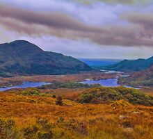 Ireland. Ring of Kerry. Ladies View. by vadim19
