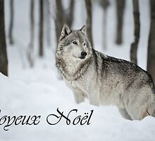 Timber Wolf Christmas Card French 6 by WolvesOnly