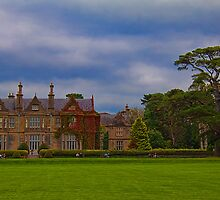 Ireland. County Kerry. Muckross House. by vadim19