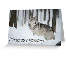 Timber Wolf Seasons Card 6 Greeting Card