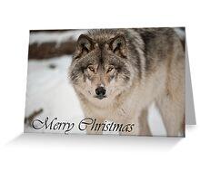Timber Wolf Christmas Card English 8 Greeting Card