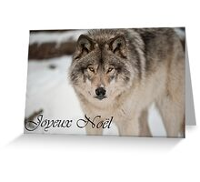 Timber Wolf Christmas Card French 8 Greeting Card