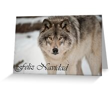Timber Wolf Christmas Card Spanish 8 Greeting Card