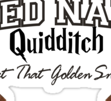 Naked Quidditch - Hufflepuff Yellow Sticker