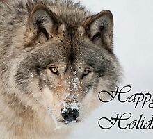 Timber Wolf Holiday Card 9 by WolvesOnly