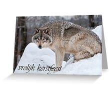 Timber Wolf Christmas Card Dutch 10 Greeting Card