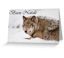 Timber Wolf Christmas Card Italian 11 Greeting Card