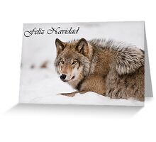 Timber Wolf Christmas Card Spanish 11 Greeting Card