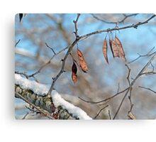 Snowy Branch Metal Print