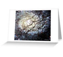 Starry Snowy Night Greeting Card
