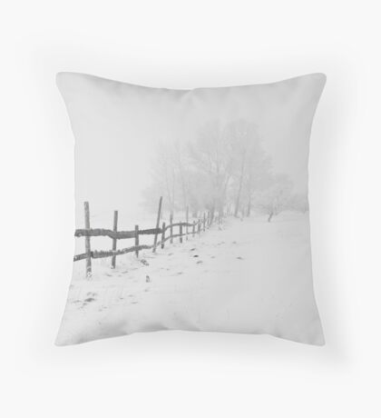 Beautiful Winter Scene Throw Pillow
