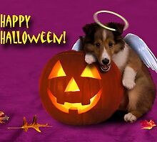 Halloween Angel Shetland Sheepdog by jkartlife