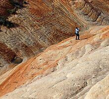 Rare Earth by Robert C Richmond