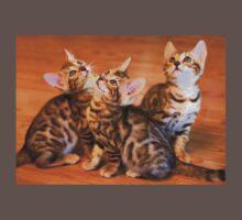 Bengal Kittens Posing One Piece - Short Sleeve