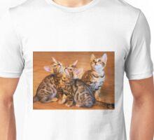 Bengal Kittens Posing Unisex T-Shirt