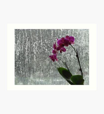 Stand in the Rain Art Print
