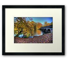 Windsor Great Park in the Autumn Framed Print