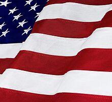 USA Flag by Michael Shake