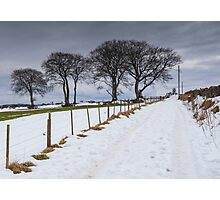 Snowy Track Photographic Print