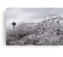 Niagara's Artistic Hand - Frozen Mist Sculpted on Tree Branches Canvas Print