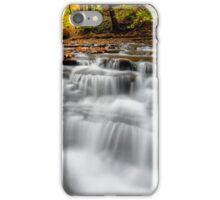 Autumn Waterfall iPhone Case/Skin