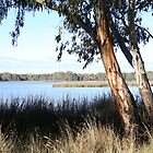 Lake Moodermere by Melani