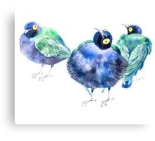 Funny exotic birds Canvas Print