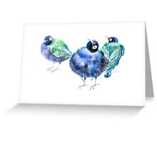 Funny exotic birds Greeting Card