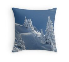 Frozen Winter Scene Throw Pillow