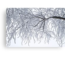 Frozen Branches Winter Theme Canvas Print