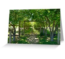Valley Of Cool Shade Greeting Card
