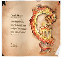 Dragon Scale: Candle Drake Poster
