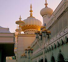 Taj Mahal (AC version)       ^ by ctheworld