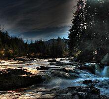 Water's Quiet Roar by Carrie Blackwood
